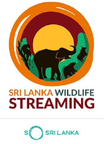 SLWLStreaminglogo